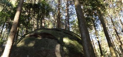 七沢にある「亀石」を見てきました