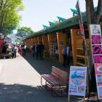 道志渓谷春の豚祭り 開催中!